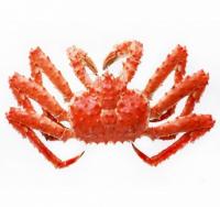 费奥德 熟冻帝王蟹单品 皇帝蟹大螃蟹海蟹 海鲜水产 1200g-1400g 智利进口