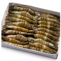 海之兴 草虾黑虎虾斑节虾 大虾海虾海鲜水产 950g/袋 越南进口